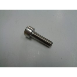 Front Water Neck Bolt 8x25